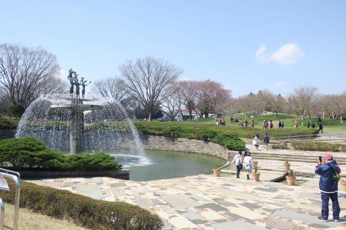 国営昭和記念公園~2020年はおあずけになってしまった春の景色をご紹介~