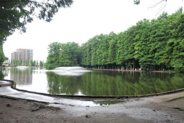 - さいたま市営 別所沼公園 1 -
